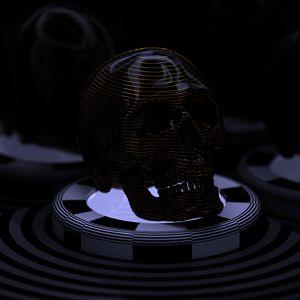 Skull (1 of 3)