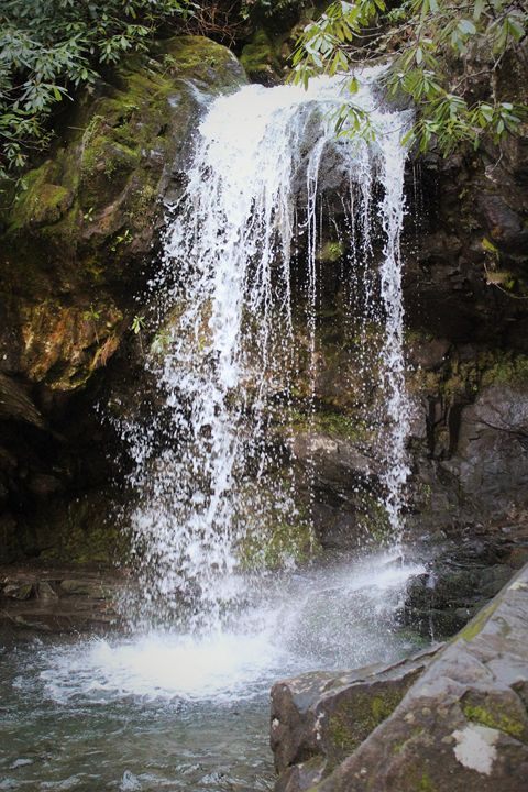 Grotto Falls - Alyssa's Gallery
