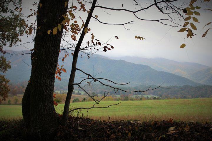Smokey Mountains_2 - Alyssa's Gallery