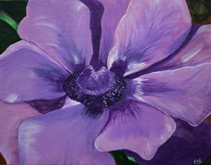 Anemone - Paintings by Komal
