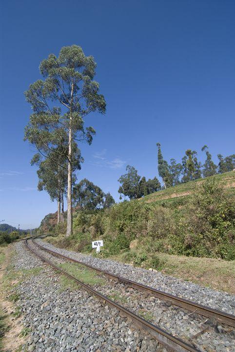 Railway track - Bhaswaran