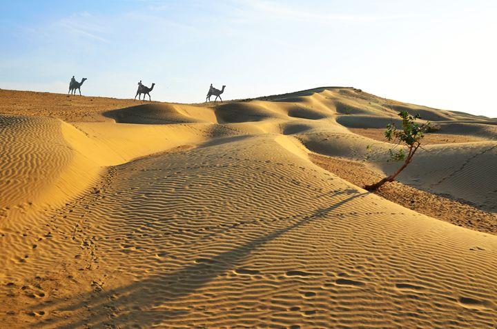 Thar desert - Bhaswaran