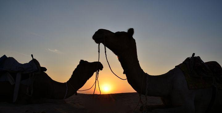 Sunset in the Thar desert - Bhaswaran