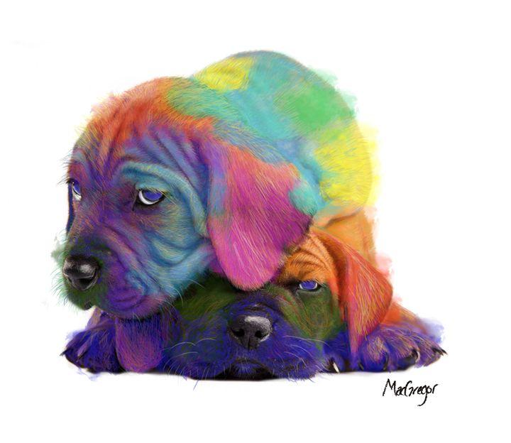 Colorful Puppies - Daniel MacGregor