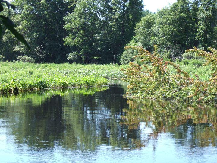 Calm waters - Zephandolf