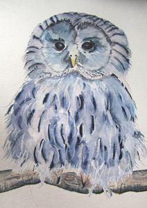 Baby Ural Owl