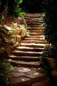 Steps Beneath The Sun