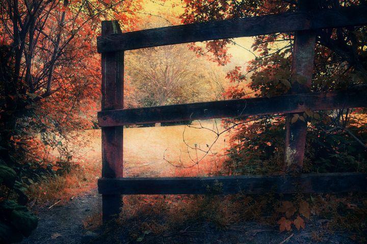 The Magic Of Autumn - Christine56