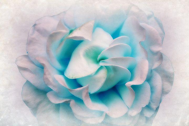 Shades Of Blue - Christine56