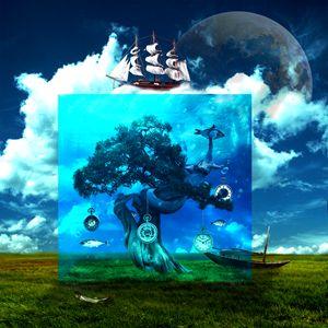 Tree of time - Daniel Kullander