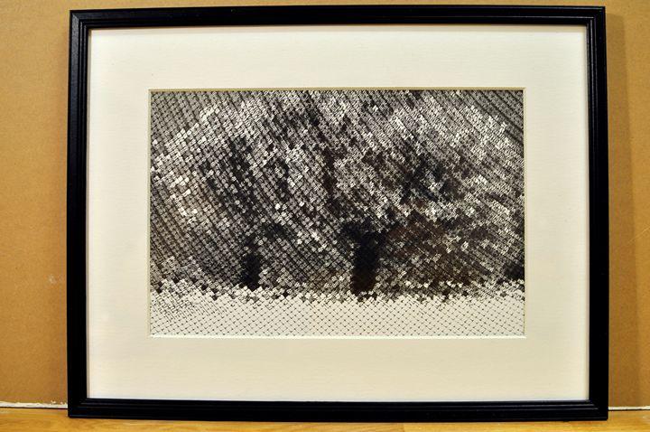 Two trees - Kaizer Abdullah von Maanen