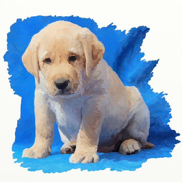 Labrador puppy - Pitura