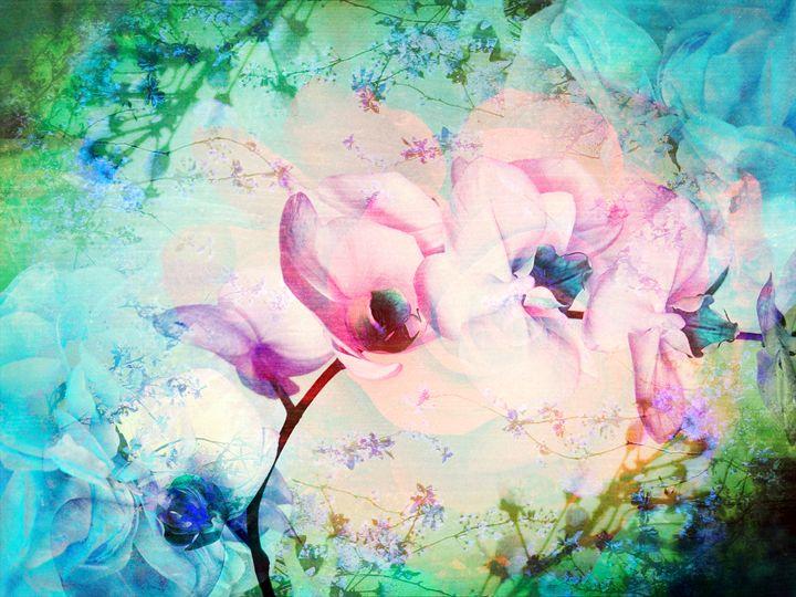 Orchid Poetry II - Flowers by Alaya Gadeh