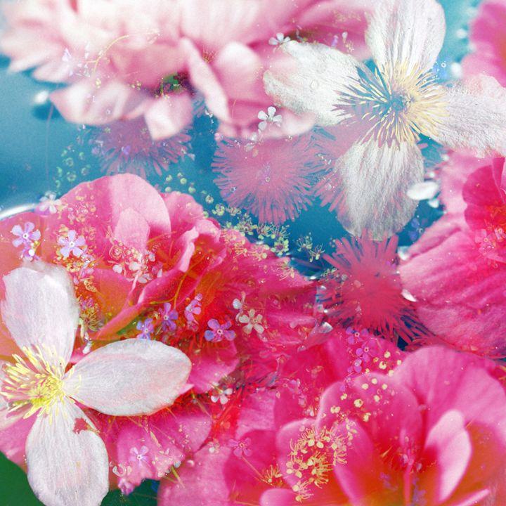 Flowers In Water 48 - Flowers by Alaya Gadeh