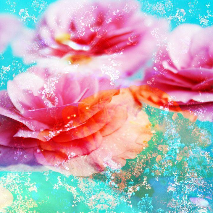 Begonia Multicolor - Flowers by Alaya Gadeh