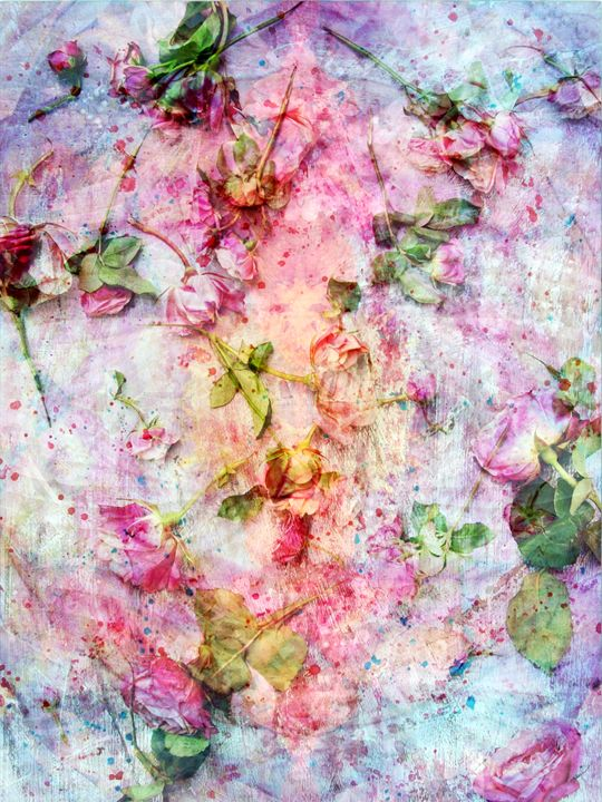 Rosefall - Flowers by Alaya Gadeh