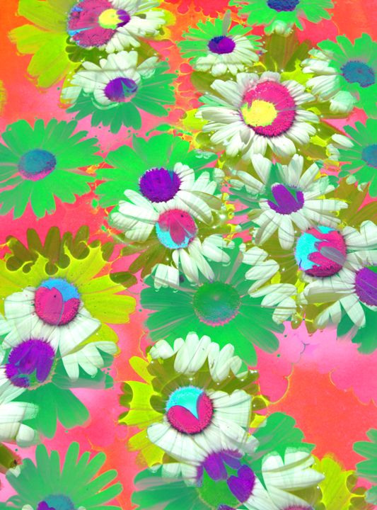 Colorful Daisies - Flowers by Alaya Gadeh