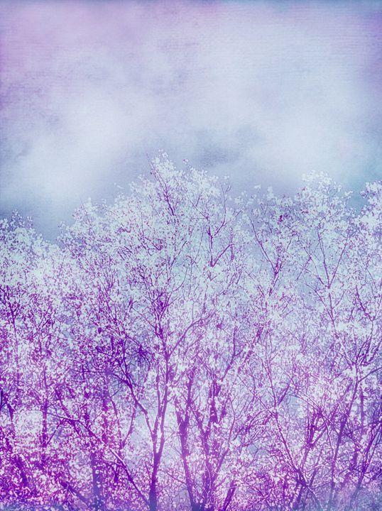 Land Of The Purple Rain - Flowers by Alaya Gadeh