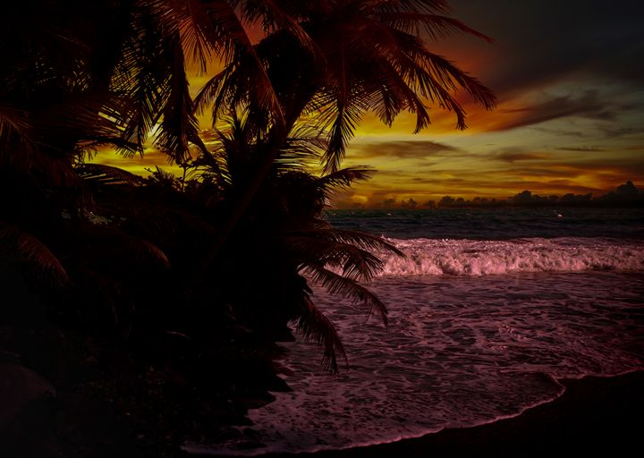 Sunset at the Beach - Gallery of Thomas