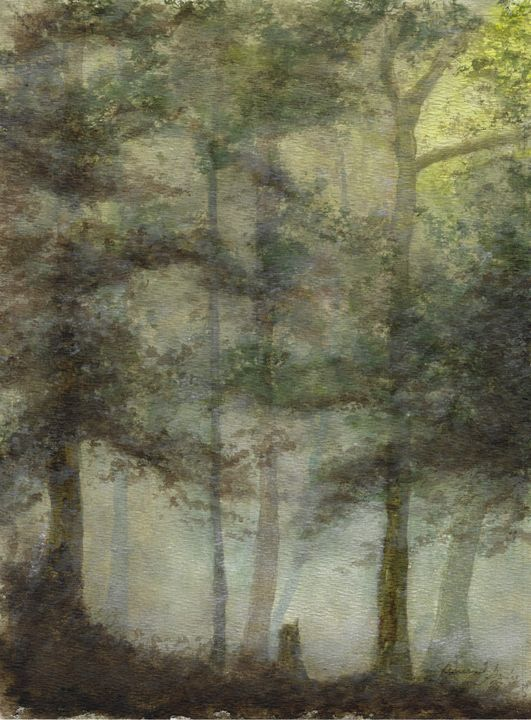 """Misty Forest - Jesus """"Chuy""""Garcia"""