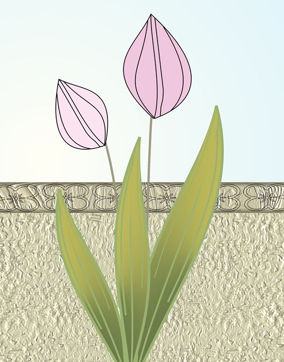 Pink Tulips - Floral