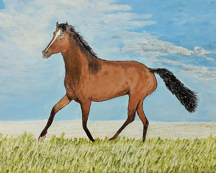 The brown Horse - Amitava0112