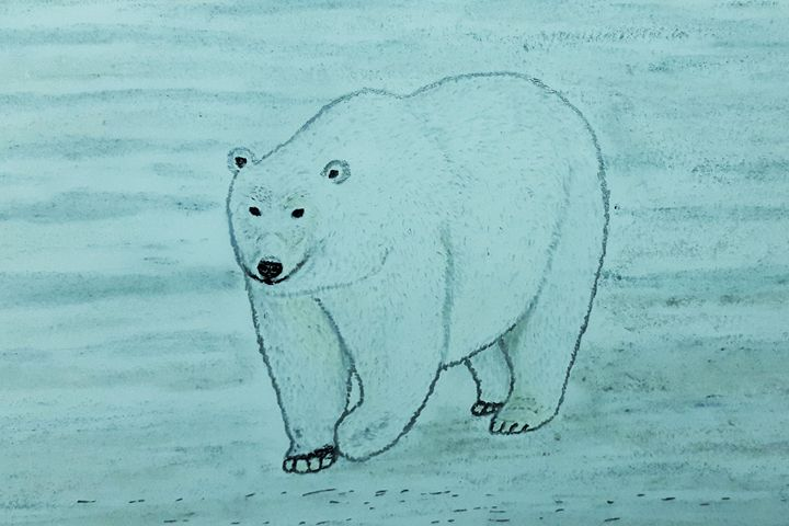 Polar Bear in the Artic - Amitava0112