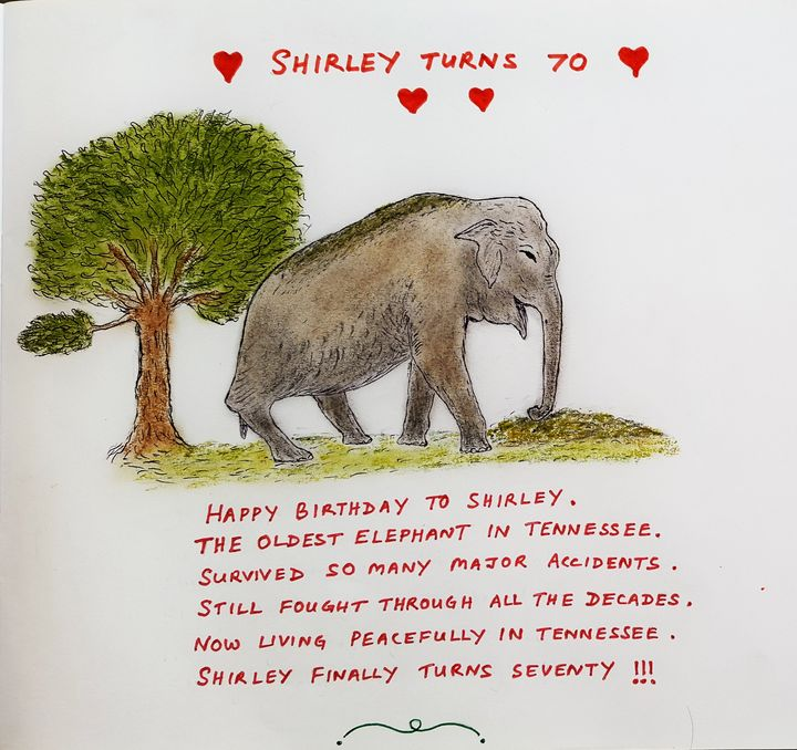 Shirley,the Elephant turns 70 - Amitava0112