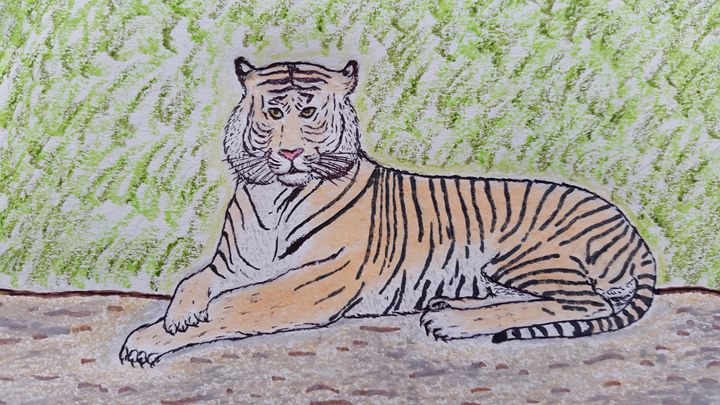 The Royal Bengal Tiger - Amitava0112