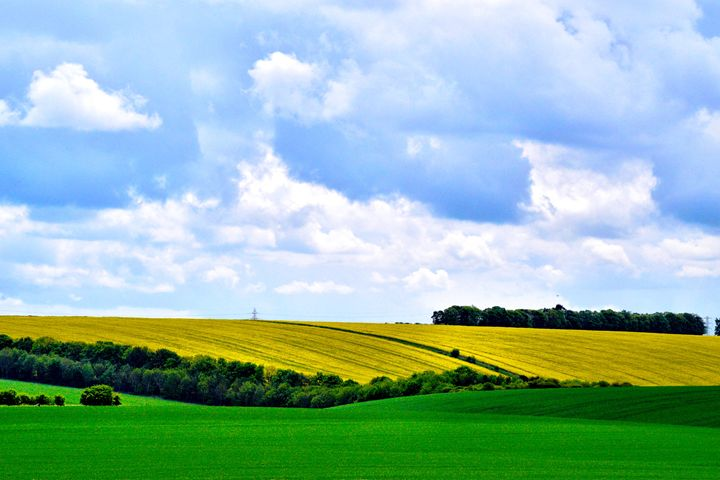 Fields of Wiltshire - Visual_Weirdo