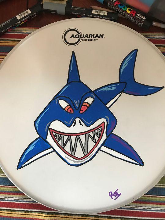Shark drumhead - Peter Marzano