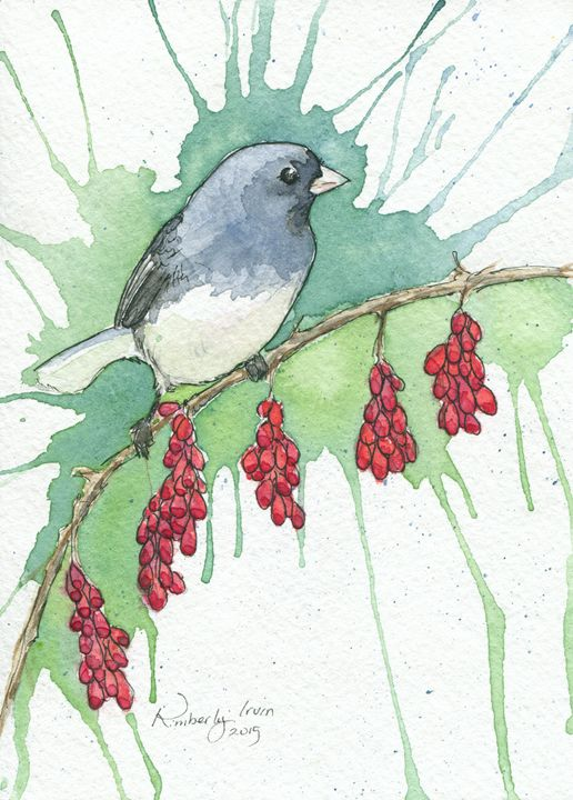Dark Eyed Junco - Lilies and Willows
