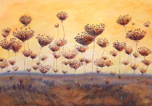 Queen Anne's lace_oil on canvas
