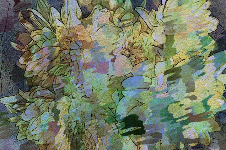 Chrysanthemums Sketched Effect - Lynn Bolt Lochside Photos