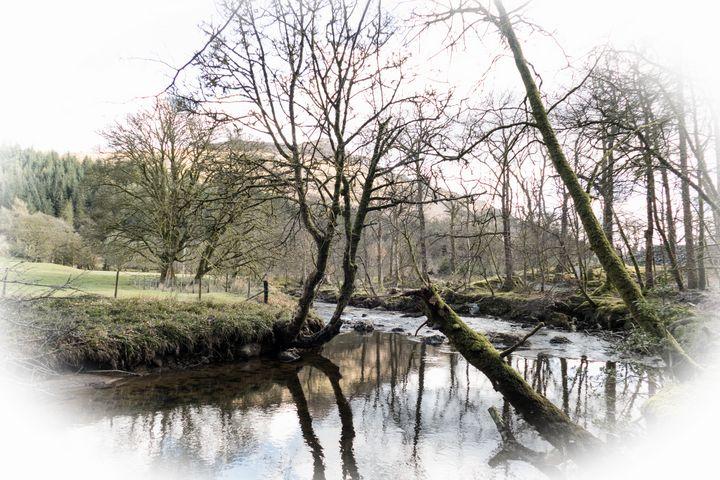 A Walk by the River - Lynn Bolt Lochside Photos