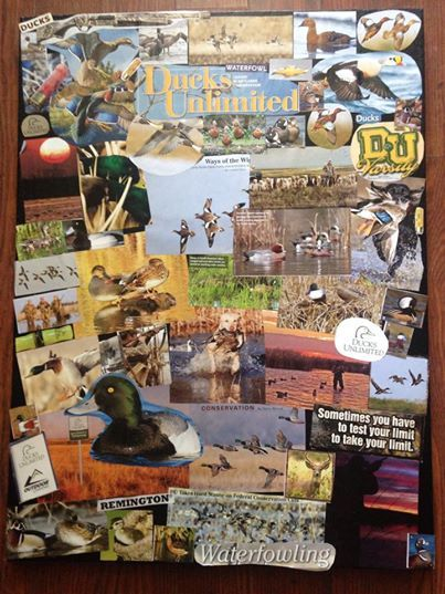 Ducks Unlimited Dream - collages