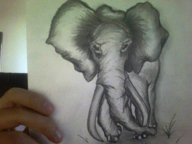 elephant tattoo - Dracob Designs
