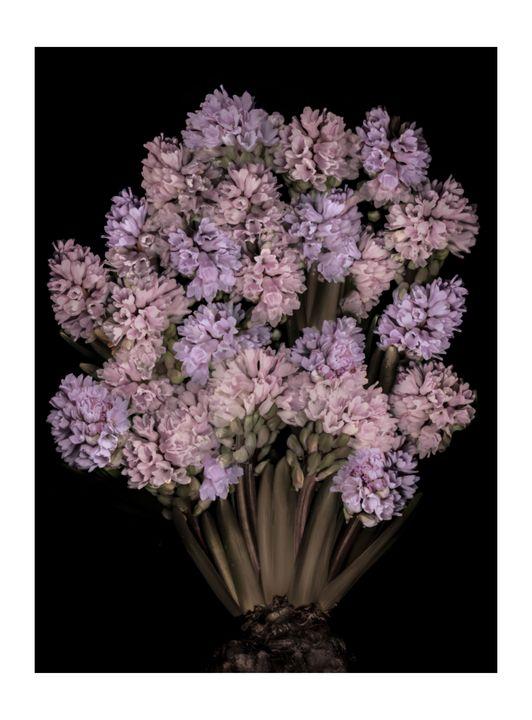 bouquet of flowers - Nature, Divine Proportion, Still Life