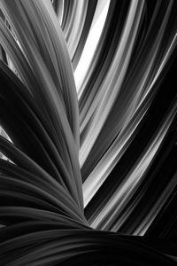 Black texture s6