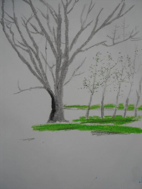 Trees - Melissa Hudson