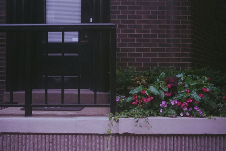 storefront flower garden - Aubrey Carpenter