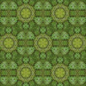 Green maze - Trudes