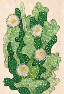 Blooming cacti, beige, white & green - ClipsoCallipso