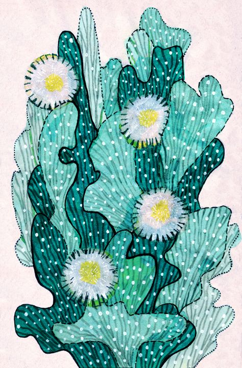 Blooming Cactus Turquoise - ClipsoCallipso
