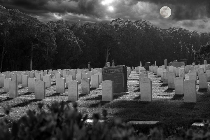 Military Cemetery - Daniel S. Krieger Photography
