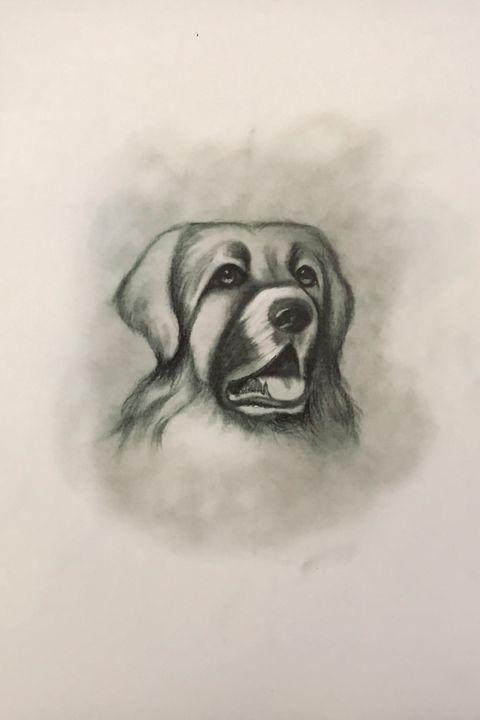 Sketching - Hellenic Shepherd - Online Lesson Demo Works