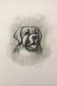 Sketching - Hellenic Shepherd