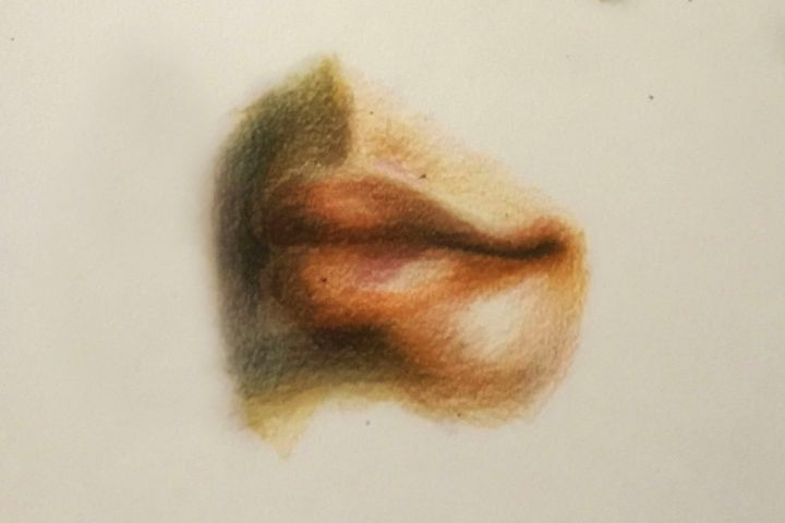 Drawing - Lips - Outschool Demo Works