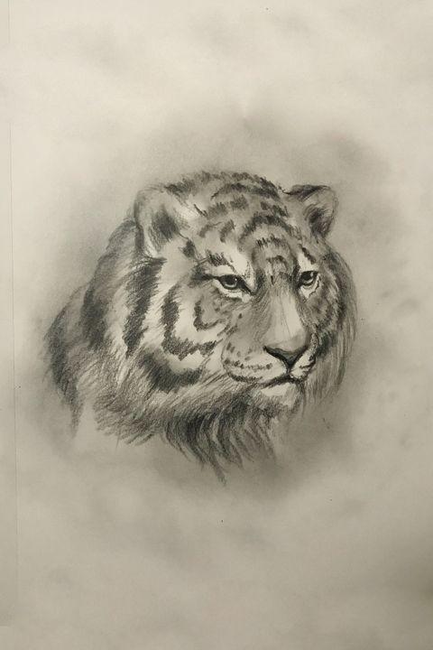 Sketching - Tiger - Online Lesson Demo Works