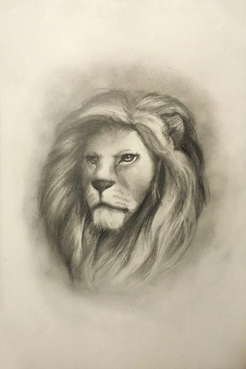 Sketching - Lion - Online Lesson Demo Works